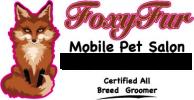 Foxy_Fur_Logo.143114229_logo 2.png